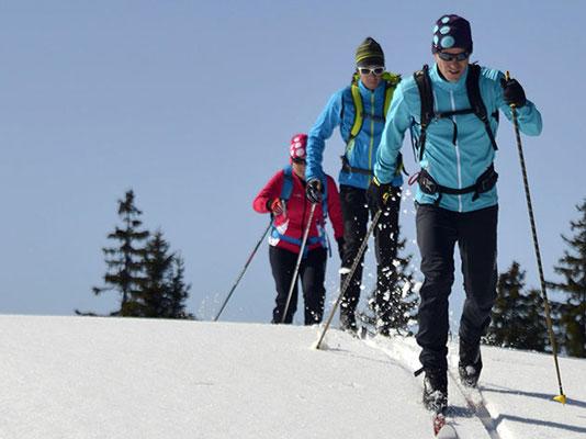 ski de fond ou nordique